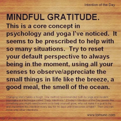 DI26_Mindful Gratitude