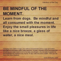 DI34_Be Mindful of the Moment
