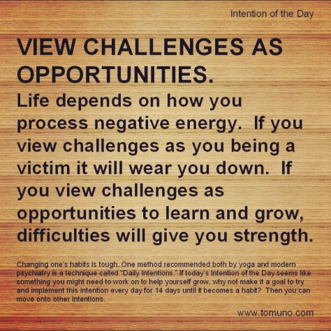 DI9_View Challenges